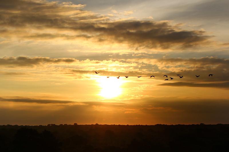 Sunrise, Yala National Park