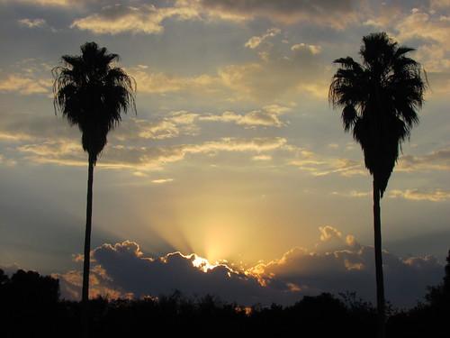 sunset sun nature sunshine clouds texas sundown cloudy dusk palmtrees riverbend
