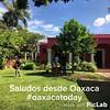 Una probadita del invierno en Oaxaca... #learnspanishinoaxaca #oaxacatoday #oaxacanow