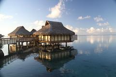 Intercontinental Moorea Tahiti 12082011_2969
