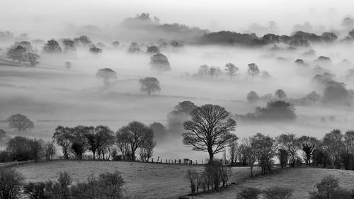 morning mist landscape unitedkingdom powys montgomeryshire