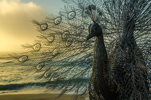 bondi artwork stainlesssteel sydney australia nsw granite sculpturebythesea tamarama sunrisedawn byeongdoomoon ourmemoryinyourplace