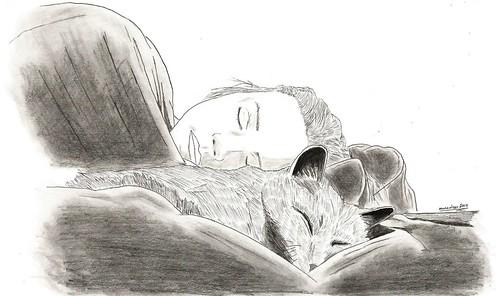A Perfect Sleep