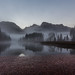 Morgennebel am Almsee by AnBind