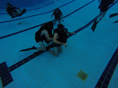 underwater diving, underwater sports, water sport, blue,
