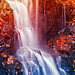 Avalon Fantasy Falls by freestock.ca ♡ dare to share beauty