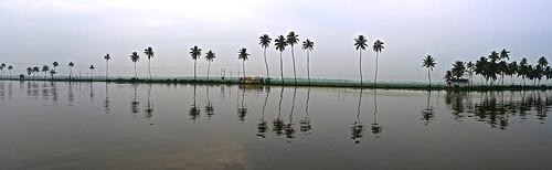 Kerala backwaters reflections panaroma
