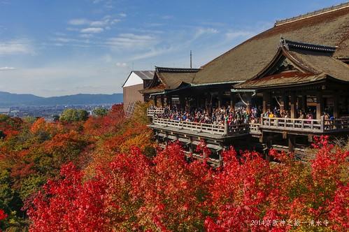 2014京阪神之旅-清水寺2202_001