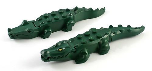 crocodile07