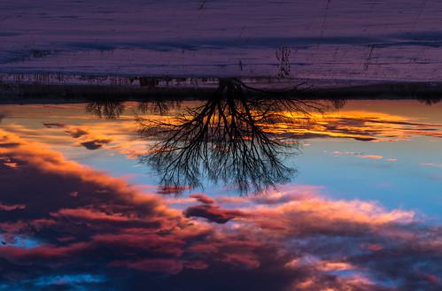 sunrise bouldercolorado flippedperspective
