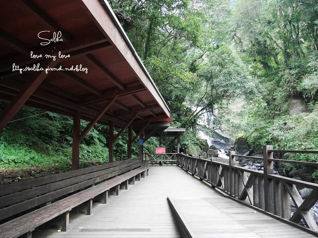 烏來景點內洞森林遊樂區 (9)