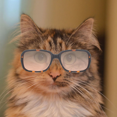 Wylla_Glasses_2