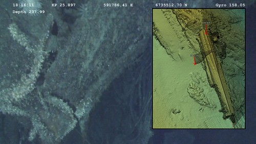 imagen del pecio del Uboot U-486