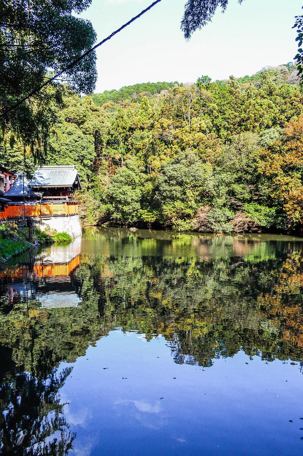 Fushimi Inari Taisha Pond