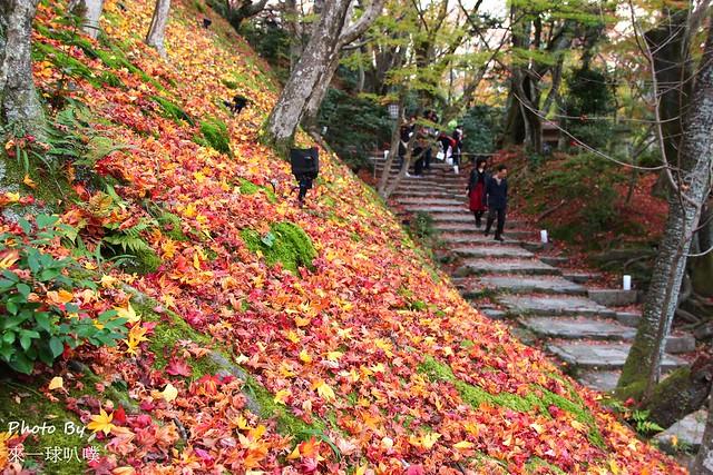 嵐山旅遊景點-常寂光寺14