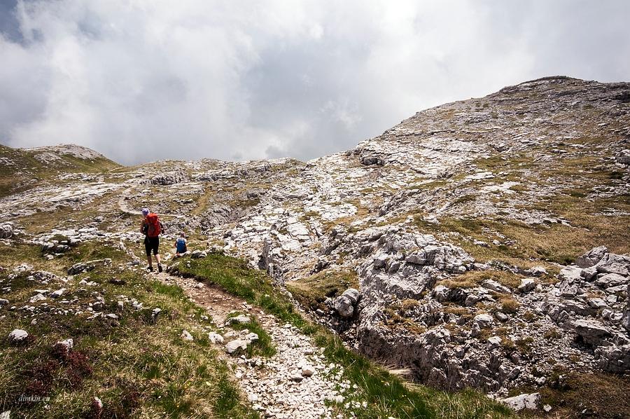 Tuenno, Trentino, Trentino-Alto Adige, Italy, 0.001 sec (1/1250), f/8.0, 2016:07:01 10:04:34+00:00, 15 mm, 10.0-20.0 mm f/4.0-5.6
