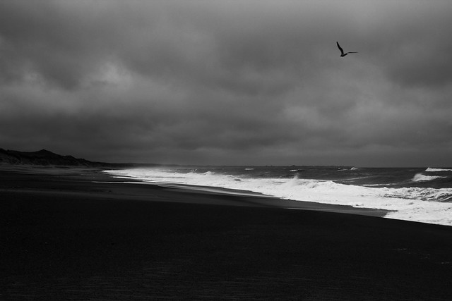 Danish Beaches in Black and White