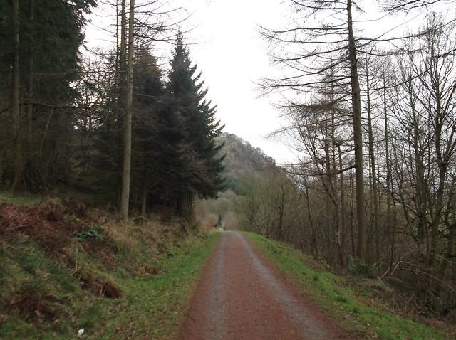 breidden hill 045