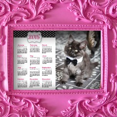 Since getting our new kitten @apolloprettykitty, I have been buying all kinds of kitty outfits and having fun taking photos of him! My kids love the photo of him wearing a tuxedo tie, so I made them a 2015 calendar for their school lockers. I designed a f