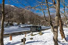 駒ケ岳登山口へ下山