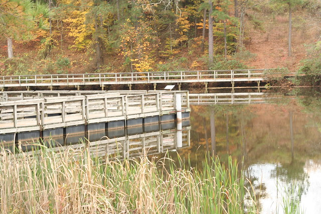 James River State Park Fall 2014 (127)