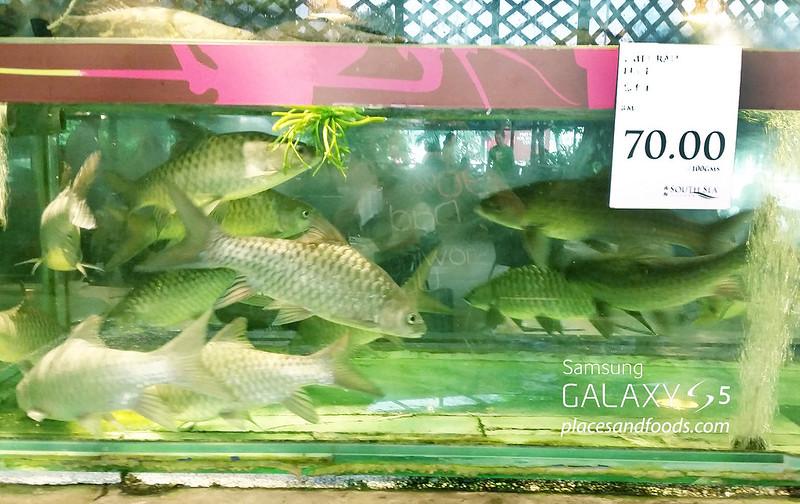 south sea seafood empurau price 2015