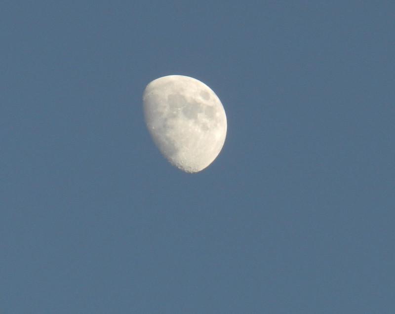 skywatchDSCN8897