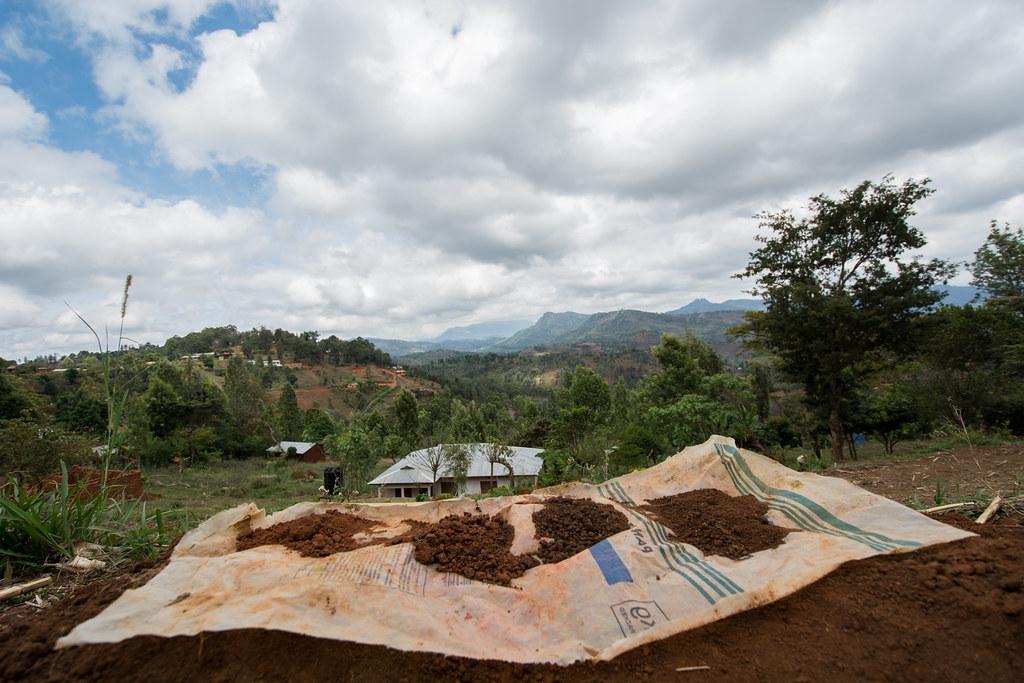 Soil profile testing, Lushoto, Tanzania