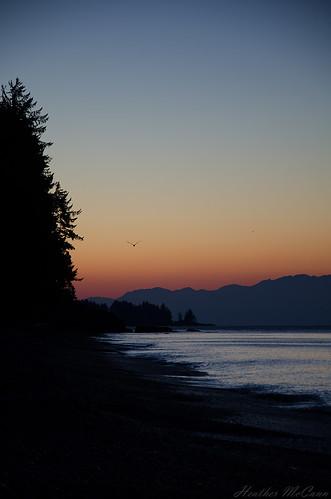 ocean sky beach forest sunrise colours bc shoreline vancouverisland shore sandcut