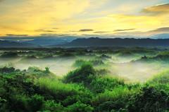 TAIWAN-台南二寮