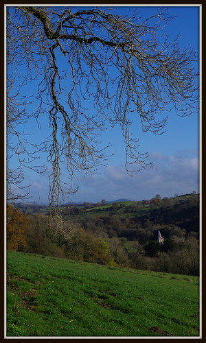 tree church field grass countryside branches bluesky valley ithon cefnllys