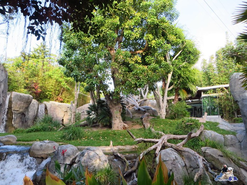 San Diego Zoo 268