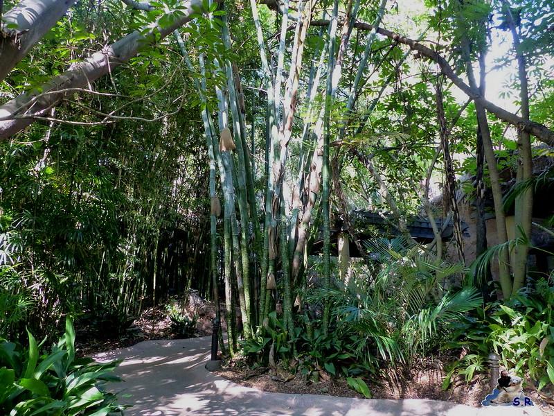 San Diego Zoo 10.11.2014 147
