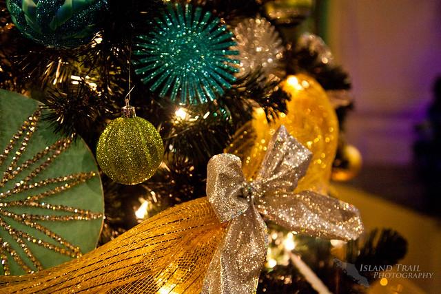Festival of Trees - 2014.12.19-9515