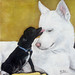 Frankie & Miley in a NEW VIDEO!!! by Eldad Hagar (Please support Hope For Paws)