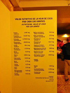 Nutritional Value of Coca