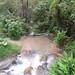 Stream/creek
