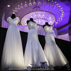 Bridal Expo Chicago