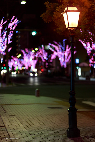 street pink winter tree japan night canon landscape cityscape illuminations 日本 冬 ways fukushima iwaki 夜 2015 福島 福島県 イルミネーション いわき ライトアップ ef85mmf18usm 85f18 いわき市 eos5dmarkⅲ eos5dmark3