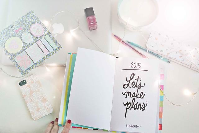 2015-plans-1