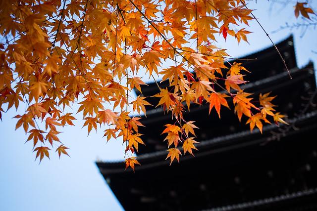 東寺,五重塔