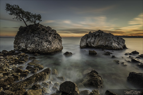 longexposure sunset sea sky mer france tree pine clouds seaside rocks pin stones ciel pierres nuages 06 arbre coucherdesoleil rochers 6d méditerranée alpesmaritimes 1635mm borddemer poselongue soleilcouchant nd1000 ezesurmer
