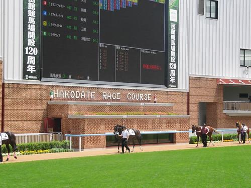 函館競馬場のダッグアウトパドックの位置