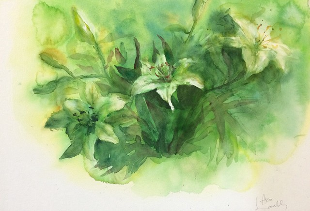 Watercolour painting of lilies (green) by Ako Lamble