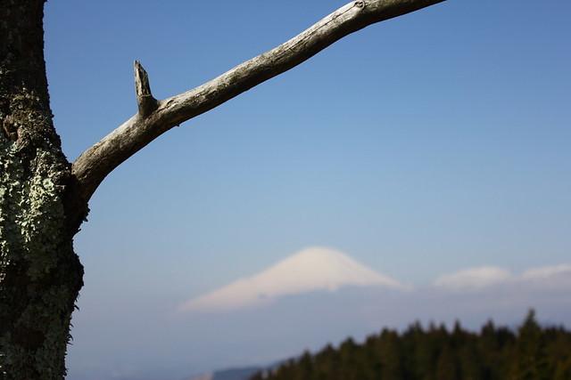 2014-03-16_00051_高松山