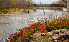 Riverscape 2 at Chagrin River Park