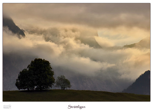 travel autumn sky mountains alps tree nature clouds canon landscape eos schweiz switzerland europe thun lonelyplanet dslr mystic nationalgeographic strättligen
