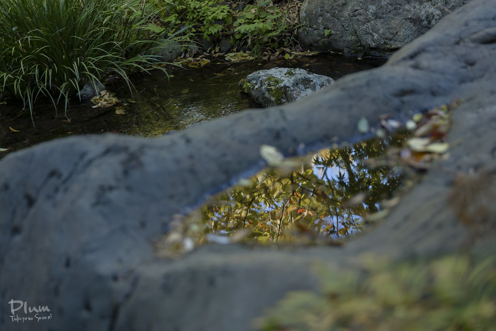 Shirotori Garden-13