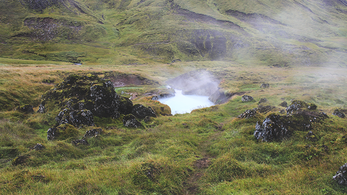 Iceland_Spiegeleule_August2014 037