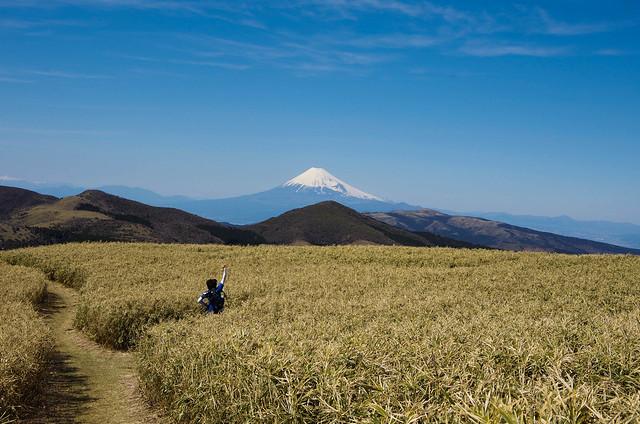 2014-03-31_00573_伊豆稜線トレイル.jpg